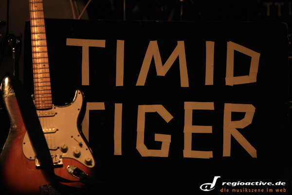 Timid Tiger (live auf dem Sound of the Forest Festival-Samstag 2010)
